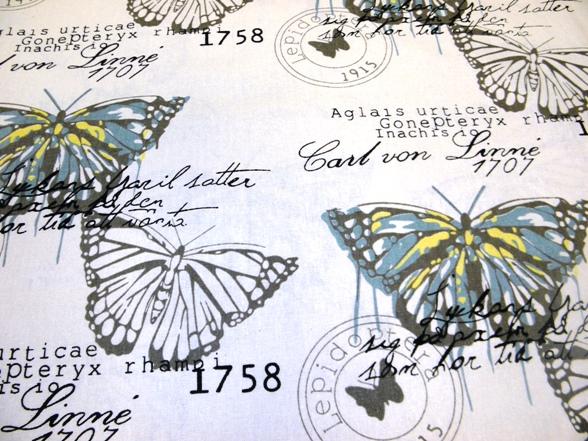 Pillangós vászon